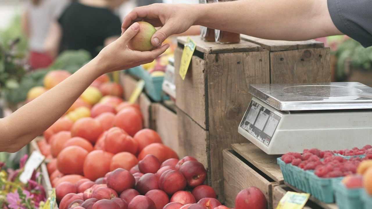 Covid-19, i dati del rapporto Ismea sui consumi degli italiani