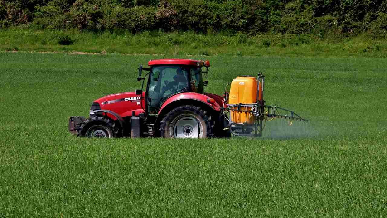 Cancro e DDT, uno studio prova gli effetti a lunghissimo termine