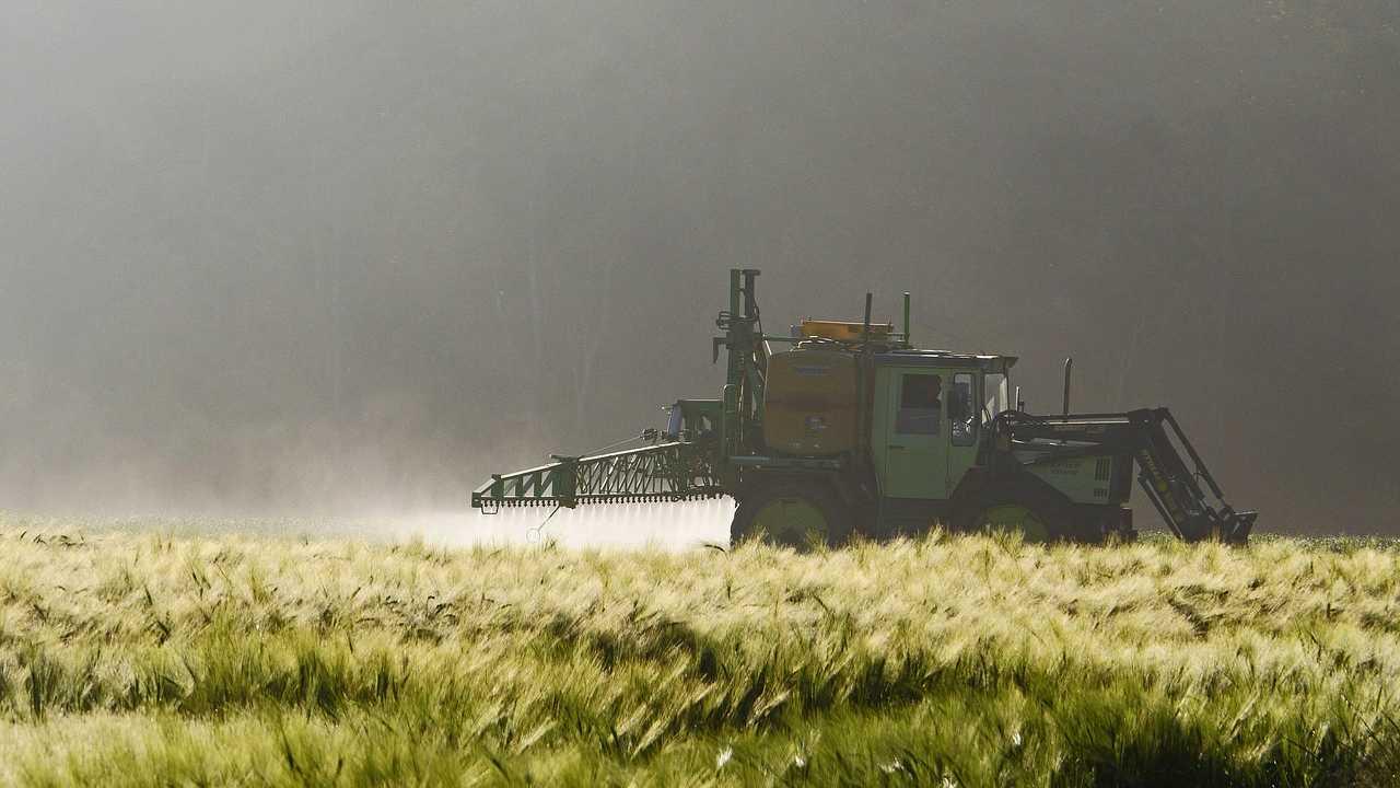 Rapporto Efsa, un alimento su quattro presenta residui di diversi pesticidi
