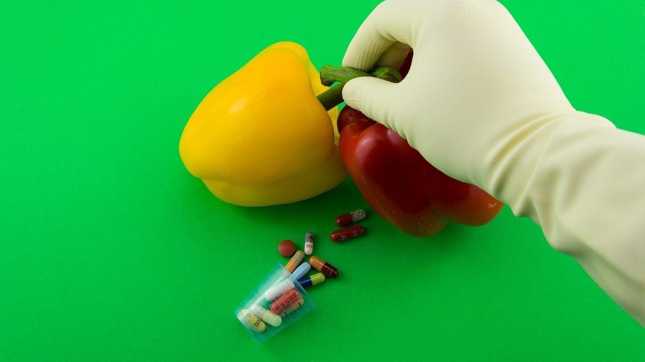 Allarme Slow Food: si rischia deregolamentazione sui nuovi OGM