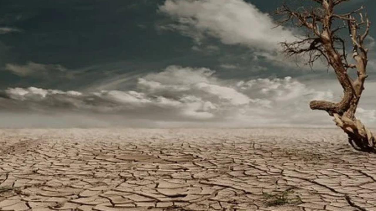 terreno arido