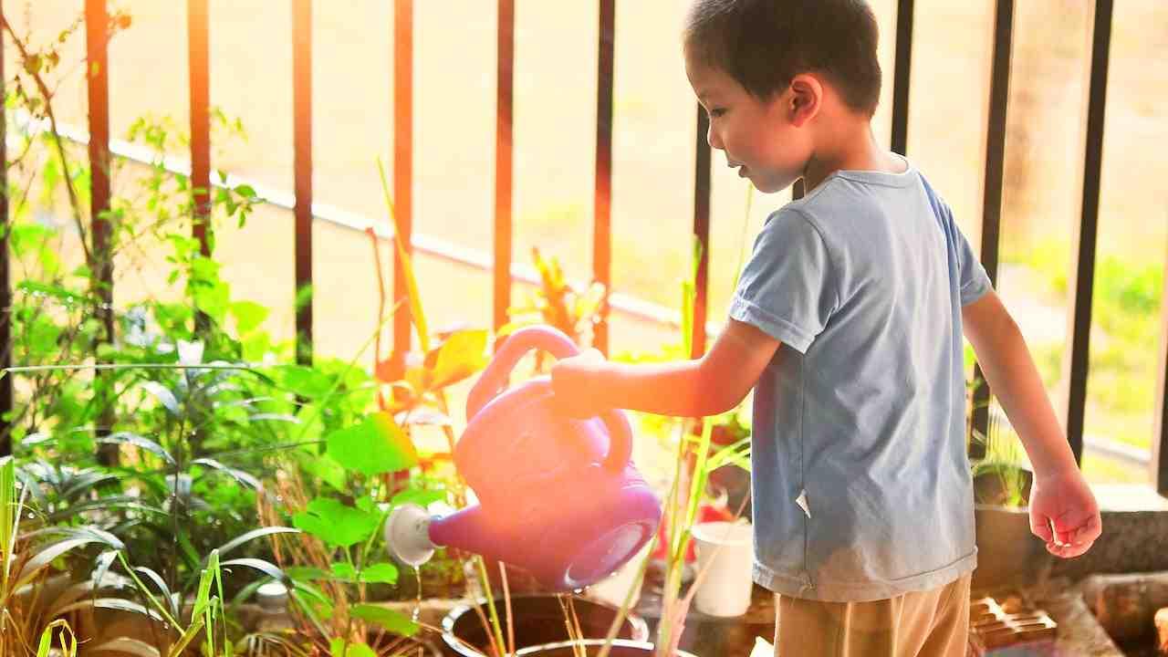 I bambini di Volpago coltivano la verdura che poi mangiano a scuola negli orti sinergici didattici