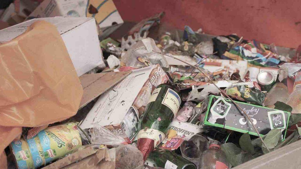 Roma invasa da topi e immondizia, Codacons denuncia Comune e AMA