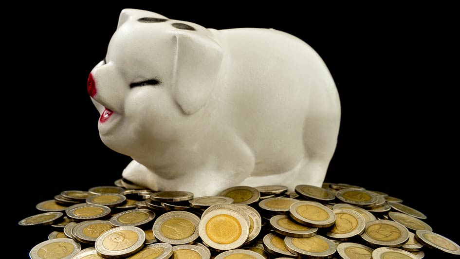 monete nel saldanaio
