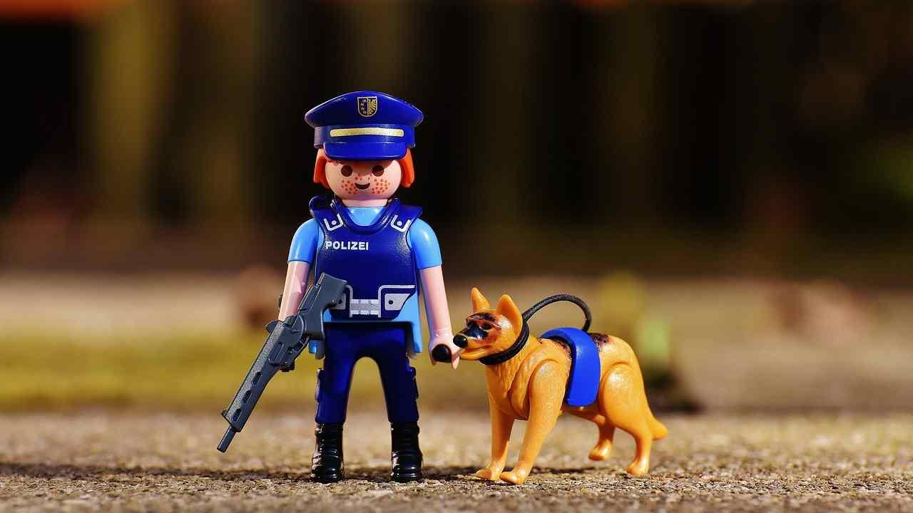Sapevi che è possibile adottare un cane poliziotto?