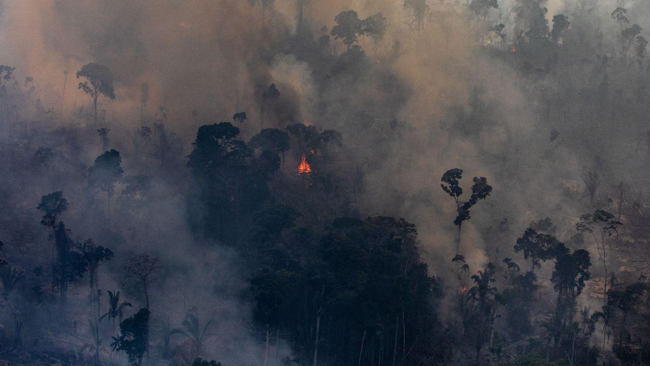 incendi brasile