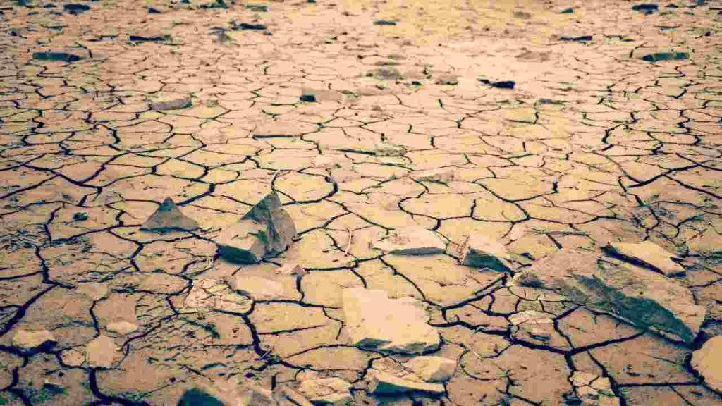 Riscaldamento globale e problemi di salute sempre più legati